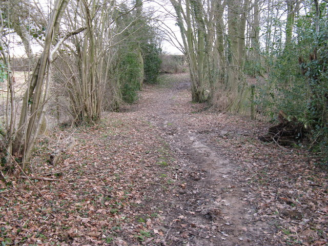Bridleway at north end of France Wood
