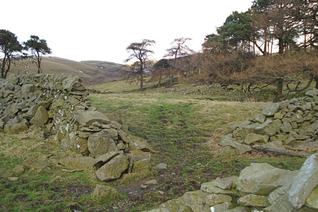 Old sheepfold at Greenfieldknowe