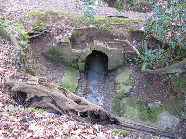 Culvert at France Wood