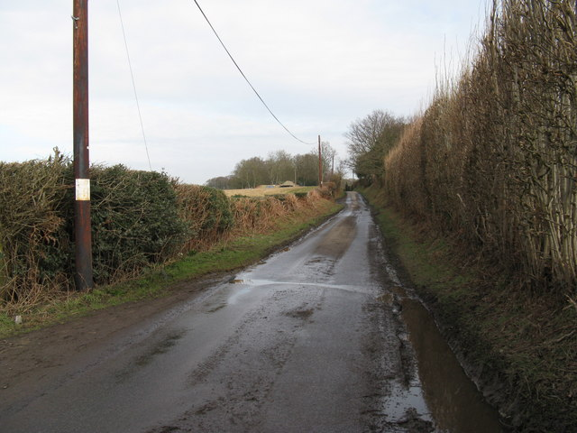 Lane to Great Ailies Farm