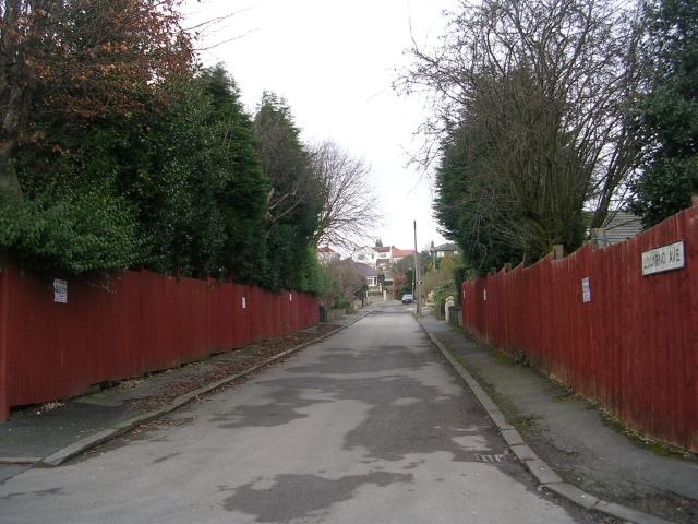 Locarno Avenue - Smith Lane