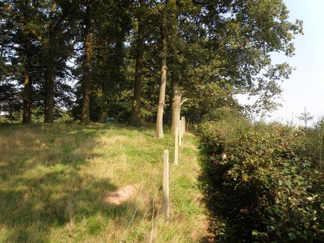 Footpath near Gatcombe