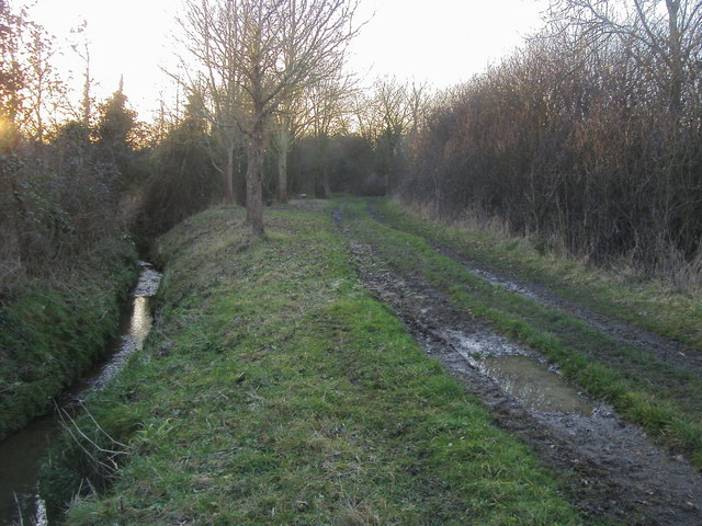 Footpath by ditch