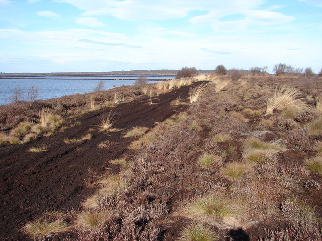 Humberhead Peatlands National Nature Reserve