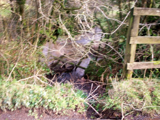 Stream, near Broomylake, Llanteg