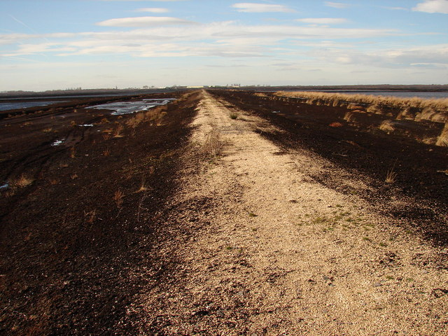 Surfaced track on Hatfield Moors