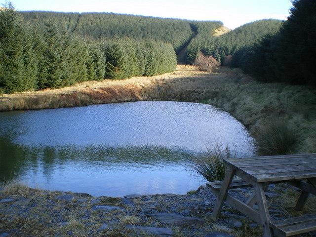 Pool in Cwm Orog
