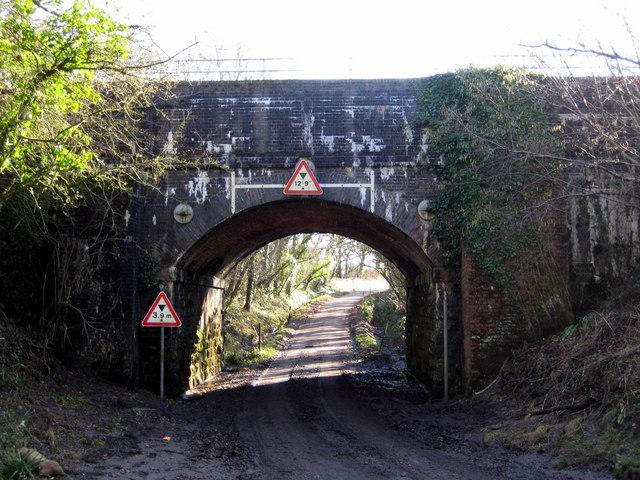 Railway Bridge near Pipplepen Farm