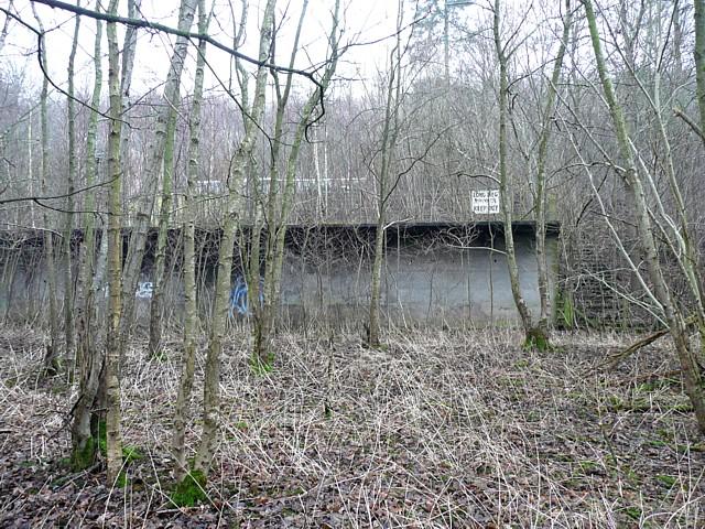 Long Meg Mine, Little Salkeld