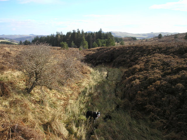 The upper course of the Howdenpot Burn