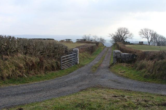 Lane to Llwydcoed-fawr