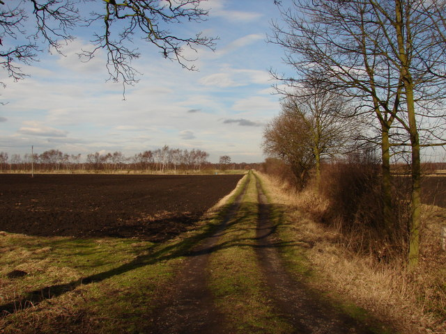 Track and field on Hatfield Moors