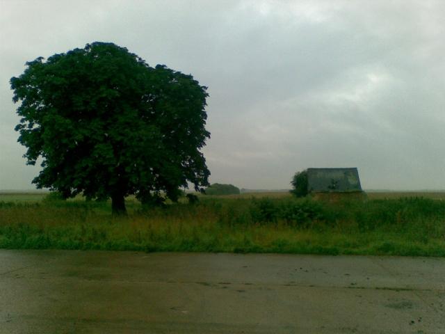 Park Farm shed