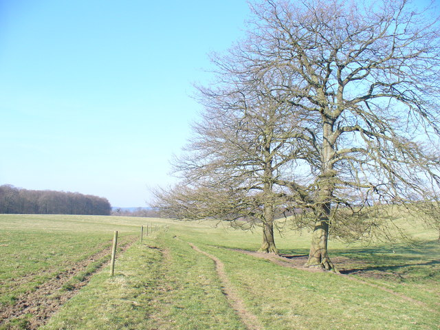 Footpath from Parsonage Farm