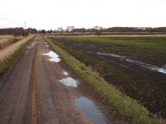 Road to Lindholme Grange