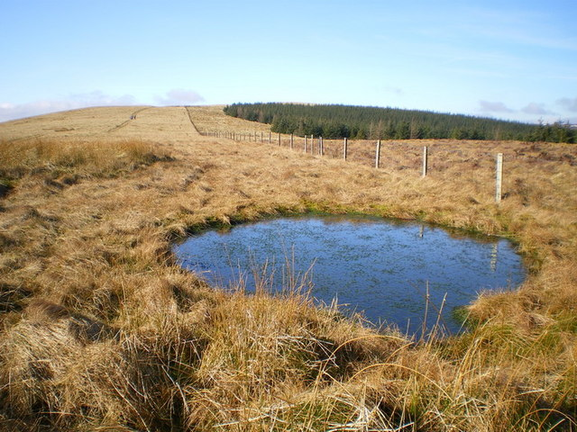 Pool on the ridge