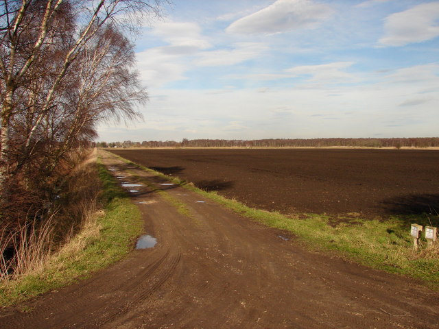 The long road to Lindholme Grange