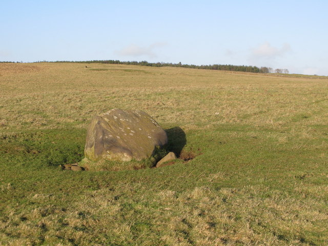 Lonely rock on Walwick Fell