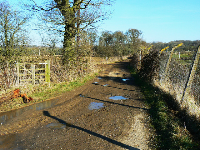 Cycle route 4, near Compton Bassett