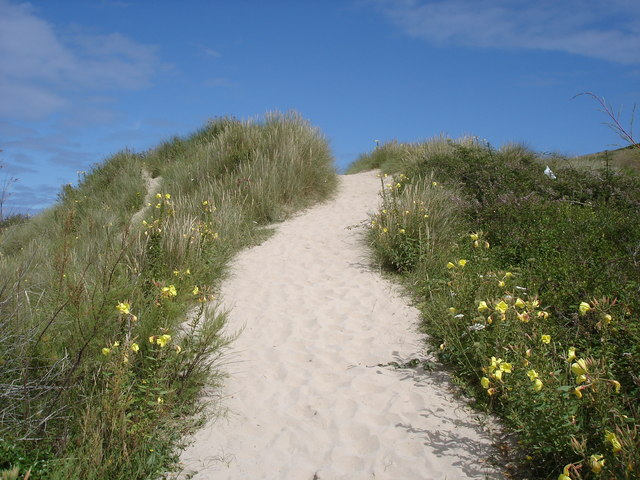 Dune path on the east side of the Camel Estuary
