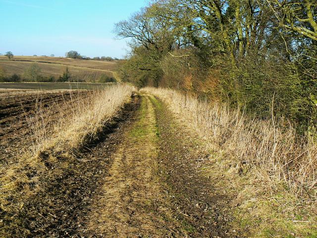 Bridleway towards Oak Bed, near Compton Bassett