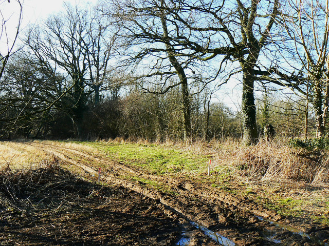 Footpath north of New Covert, near Compton Bassett