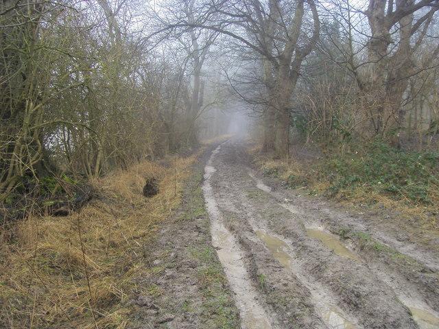A misty Ridgeway