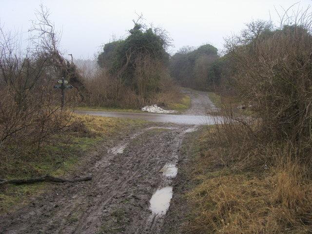 The Ridgeway