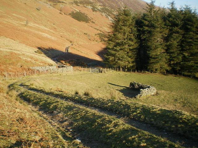 Sheepfolds in Cwm Rhiwarth