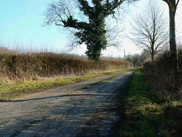 The road from Freeth Farm, north of Compton Bassett
