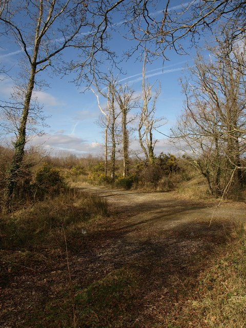 The edge of the claypits