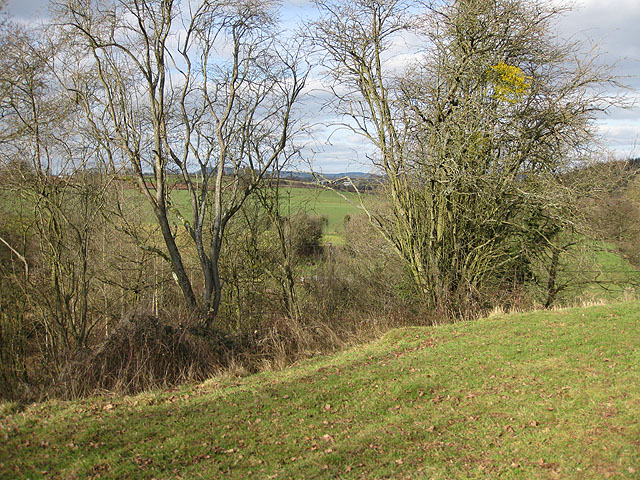 View from earthworks at Dingestow