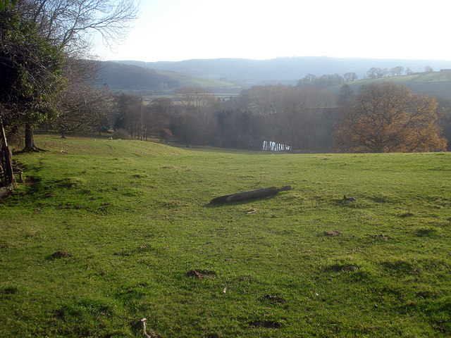 Sheep pasture and pond at Wigmore Hall