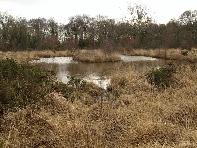 Pond on Chudleigh Knighton Heath