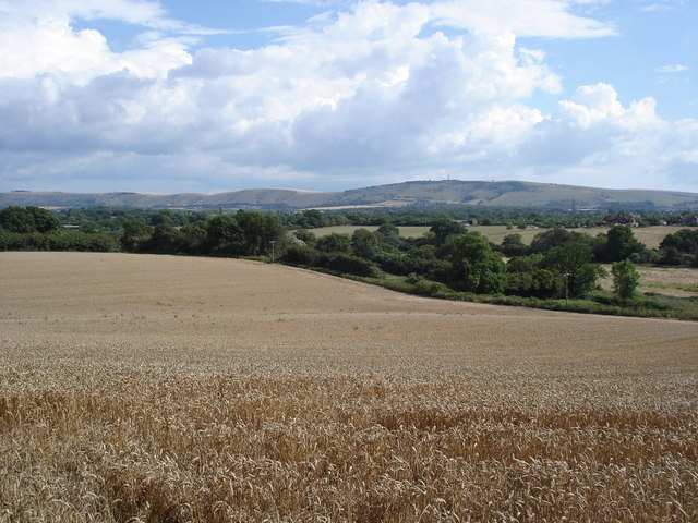 Henfield - view towards the South Downs from near South View Terrace