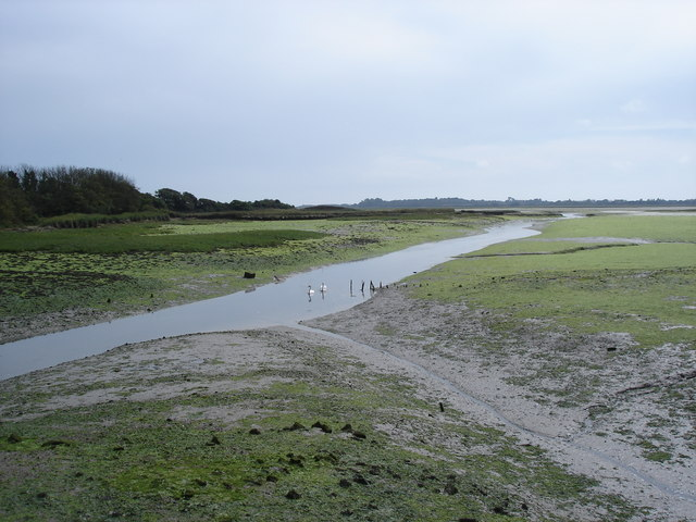 Pagham Harbour - near Little Welbourne