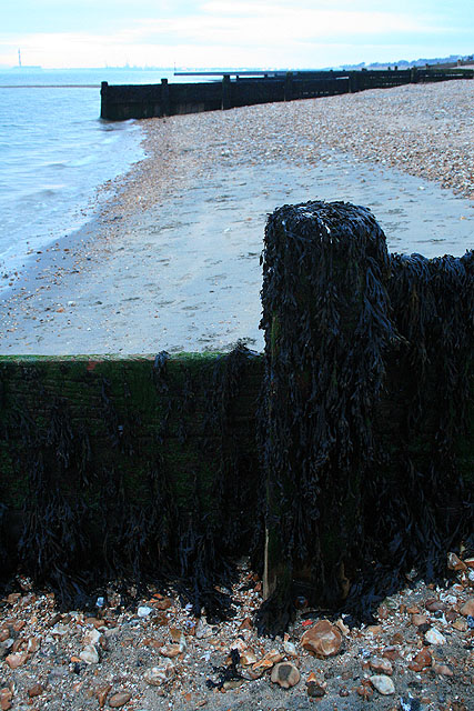 Groynes at Lee-on-the-Solent