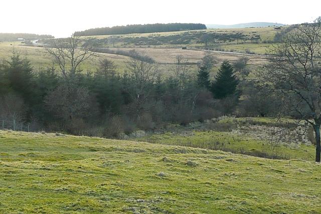 Above Clawdd Brythonig