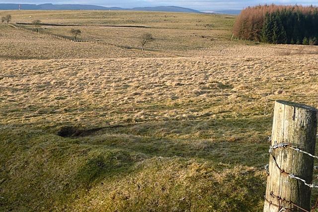 Rough grazing above Nant Dulas