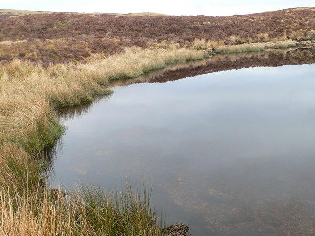 Inlet, eastern end of Llyn Conwy