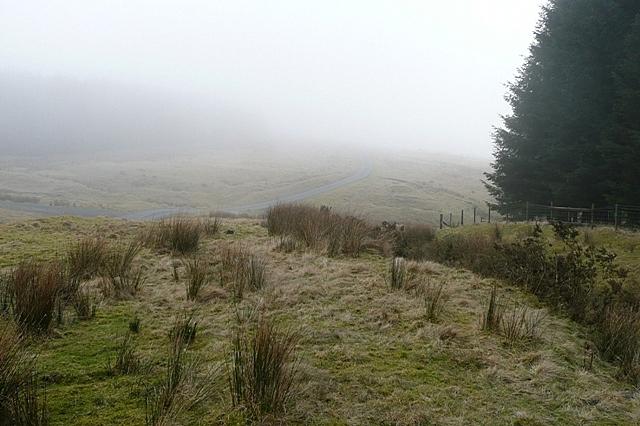 Near Bryn y Garn