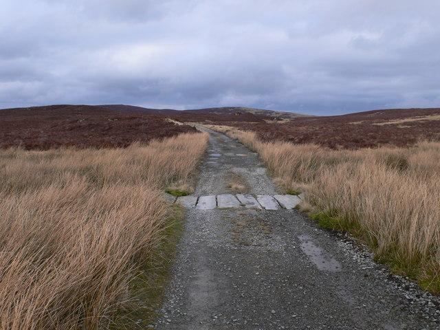 Track to Llyn Conwy