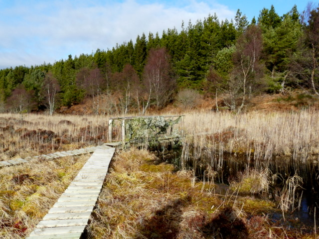 Boardwalk across Loch as Airde