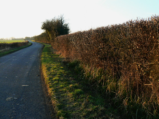 The road to the A3102, east of Hilmarton