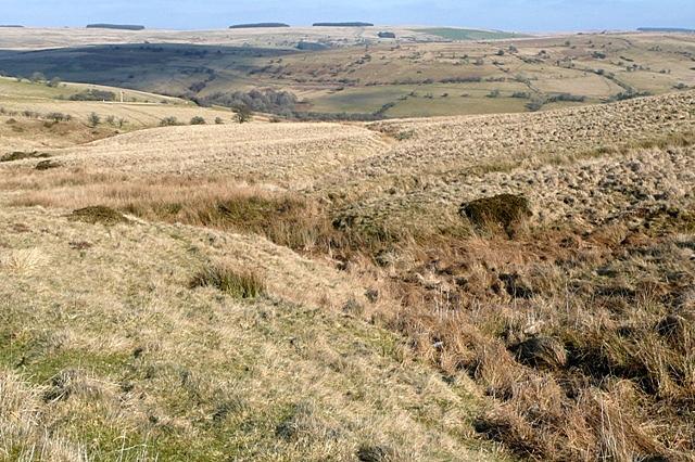 Rough grazing above Ysgir Fechan