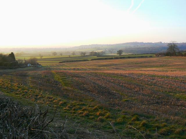 Farmland, Catcomb