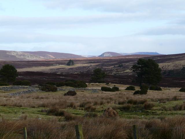 Acharry Moor