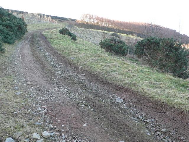 Track near to Abbey St. Bathans