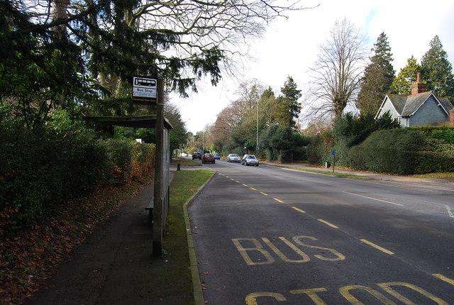 Bus Stop, Pembury Rd