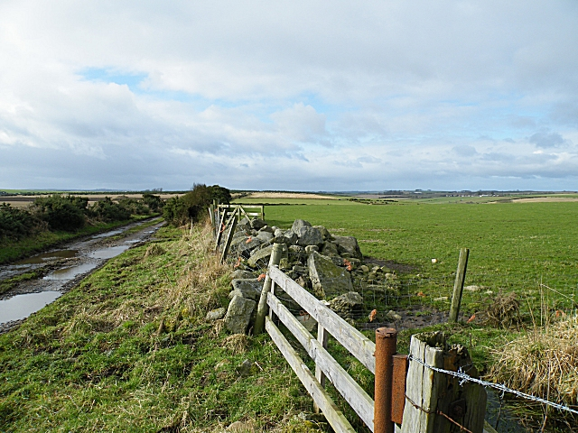Near Mains of Knockhall